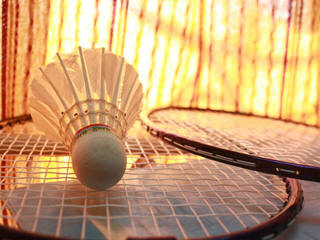 Badminton shuttlecock and raquets